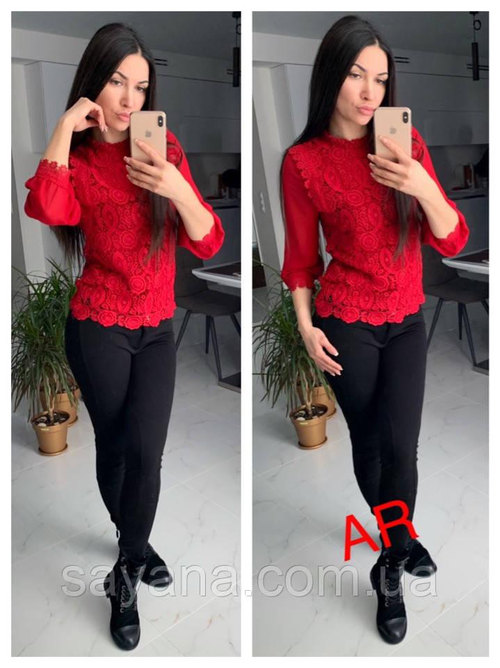 0bc5da95364 Купить Женскую блузу с кружевной вставкой в расцветках. АР-11-0119 ...
