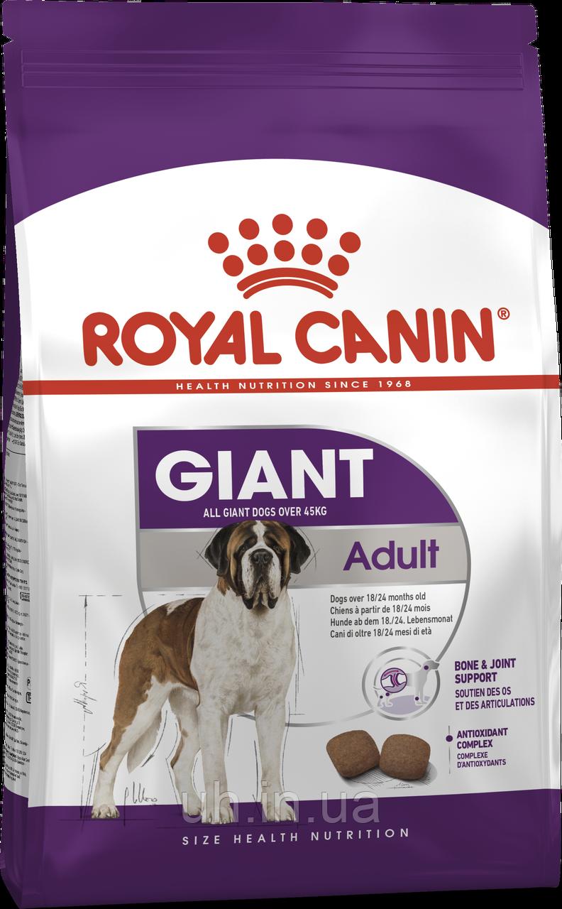 Royal Canin Giant Adult сухой корм для собак от 18 месяцев 4КГ