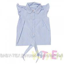 Блуза дівчинка
