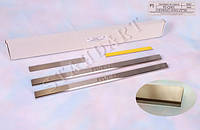 Накладки на пороги Chevrolet AVEO I/II 2002- / Шевролет Авео standart Nataniko, фото 1