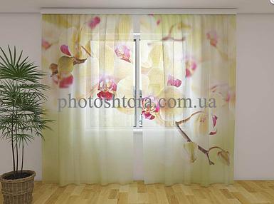 ФотоТюль Золотистые орхидеи 250 см х 260 см фото тюль с рисунком