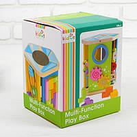 Деревянный Логический куб  Знайка в коробке, фото 1