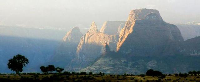 выращивание кофе арабика Джимма в Эфиопии где заказать