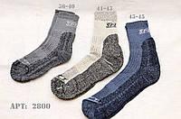 Трекинговые термо-носки STIMMA