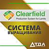 Технологія вирощування соняшника «Clearfield»