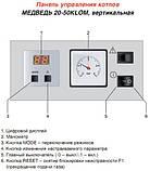 Стационарный (напольный) газовый чугунный котел Protherm 20 KLO M, фото 5
