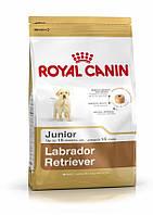 Корм для щенков Royal Canin (Роял Канин) Labrador Junior лабрадор 12 кг