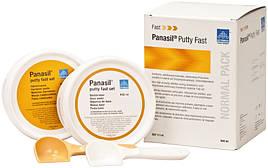 Panasil Putty Fast set (2x450 мл)