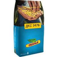 Семена кукурузы ДКС 3476 ФАО 260
