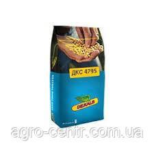 Семена кукурузы ДКС 4795 ФАО 380