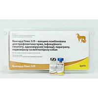Вакцина ВАНГАРД - 5/L PLUS, ZOETIS (100% предоплата)