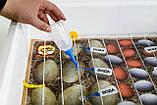 Інкубатор Теплуша хутро з переворотом на 100 яєць Теновий 220/50 ТМ, фото 8
