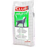 Royal Canin CC Club (Роял Канин Клуб СС) - Сухой корм для собак с обычной активностью 20кг