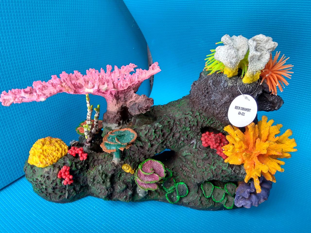 Стена коралловая, фото 1
