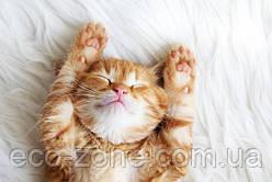 Сон на левом боку полезен для здоровья