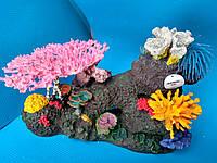 Стена коралловая