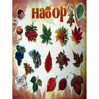 Набор на скотче Осенний, фото 1