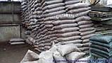 Кора сосновая для мульчирования Мульча Киев Киевская область купить кора крупная, фото 2