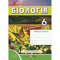 Рабочая тетрадь по биологии. 6 класс (к учебнику Костиков)
