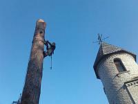 Демонтаж деревьев, удаление деревьев, полный комплекс