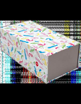 Коробка для секс-игрушек KARIM RASHID TOYBOX от Fun Factory  , фото 2