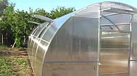 Теплица ЭКО - ТОП4  4х8 стандарт 6 мм