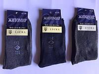 Мужские махровые носки ЖИТОМИР Р.р 42-48