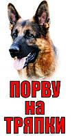 Металлическая табличка на забор собака