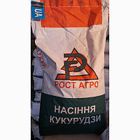 Семена кукурузы ДН Пивиха (ФАО180)