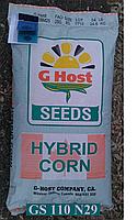 Семена кукурузы G HOST GS 110 N29 (ДЖИ ХОСТ) ФАО 290
