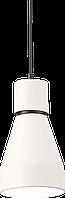 Светильник Подвес Vesta light AVALON (57121)