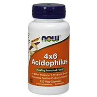 Пробиотик Lactobacillus NOW 4x6 Acidophilus 120 вег. капсул