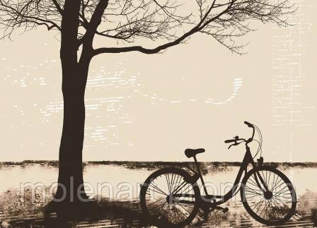 Фото принт для обоев Велосипед под деревом