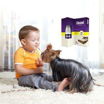 Клеанол – надолго очистит ваш дом от пылевых клещей!