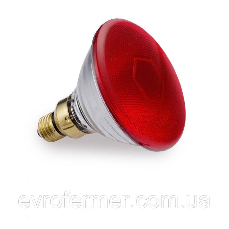 Инфракрасная лампа PAR38 150W красная