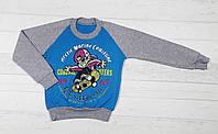 """Детский реглан с манжетом  """"Arctic marine coastine"""" для мальчика 8,9,10,11,12 лет 5489612730502"""