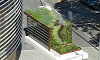 Забетонированные улицы не оставляют возможности для озеленения? Зеленые крыши решат эту проблему, и не только эту.
