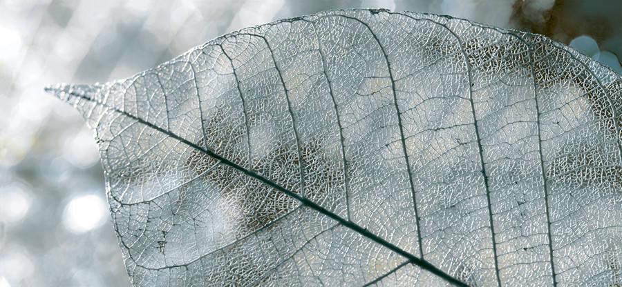 MAGIA Декор серый/Д 61 071, фото 2
