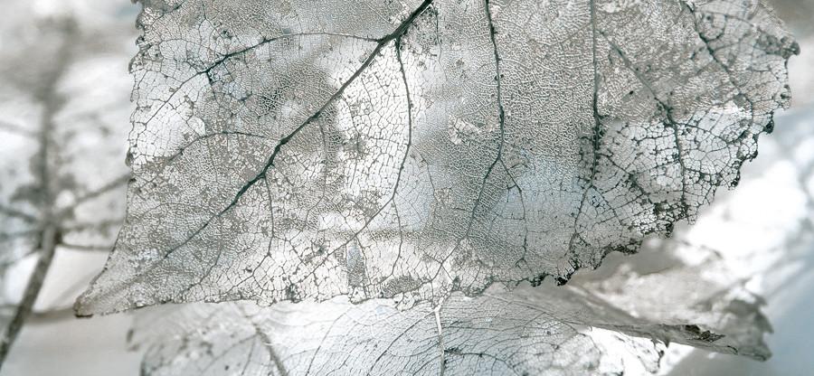 MAGIA Декор серый/Д 61 071-1