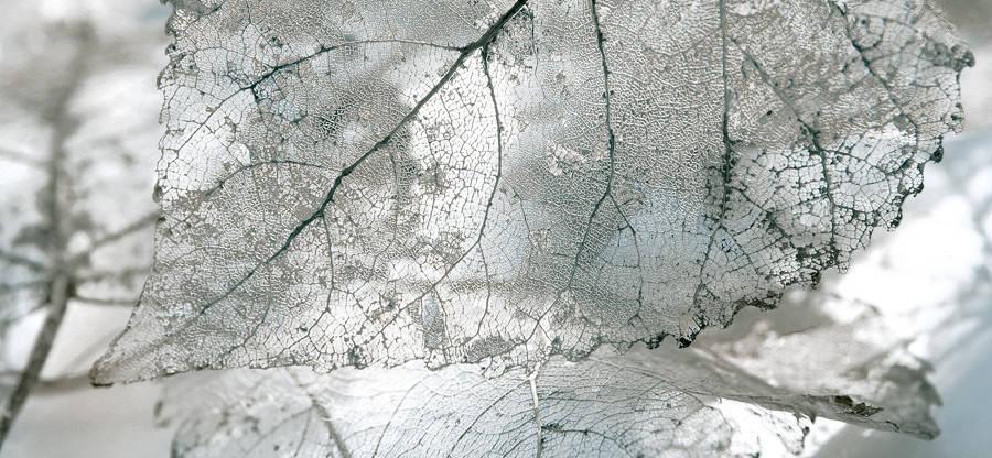 MAGIA Декор серый/Д 61 071-1, фото 2
