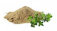 Аюрведичний порошок Брахмі (India) 100 g