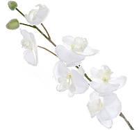 Декоративная ветка белой орхидеи заснеженная 82см (709-319)