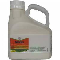 Довсходовый системный гербицид для кукурузы Мерлин (0,5 кг) от однолетних широколиственных и злаковых сорняков