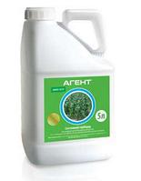 Гербіцид Агент 5л Прима, післясходовий системний гербіцид для газону, кукурудзи, пшениці, ячменю, сорго, проса