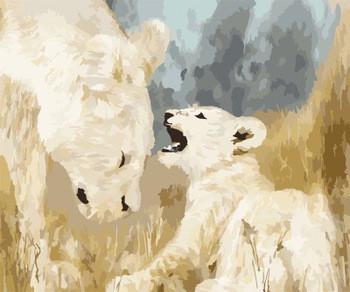 Картина по номерам Белые львы 40 х 50 см (BK-GX7645)