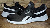 Оригинальные мужские кроссовки Reebok Royal EC Ride 2