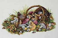 MEREJKA Набор для вышивания Mushrooms / Грибы