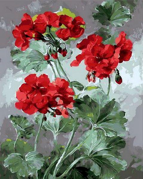 Картина по номерам Роскошная герань 40 х 50 см (MR-Q1050)