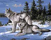 Картина по номерам Волки на снегу 40 х 50 см (NB236)