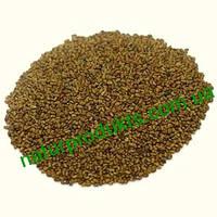 Люцерна (семена), 200 г. Подходит для проращивания. Не магниченая, органическая